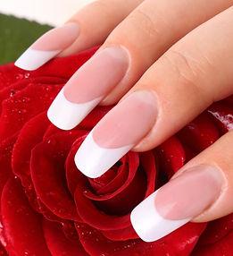 Woman's hand holding rose..jpg