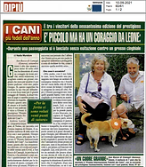 Immagine 2021-09-07 125615.png