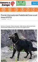 Immagine 2021-08-31 182619amore.png
