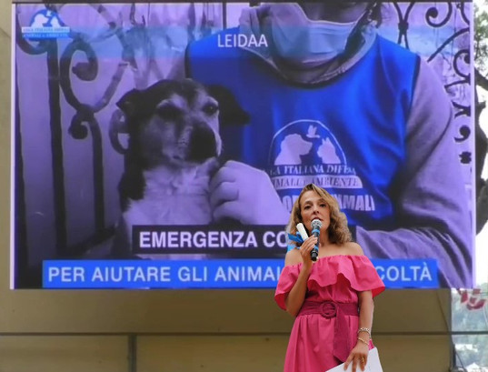 LEIDAA Lega Italiana Difesa Animali Ambiente