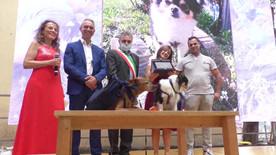 AMON premiato da Francesco Olivari, Sindaco di Camogli, da Pietro Boselli, Vicedirettore generale della Banca di Piacenza e da Sonia Gentoso, presidente AVT San Rocco