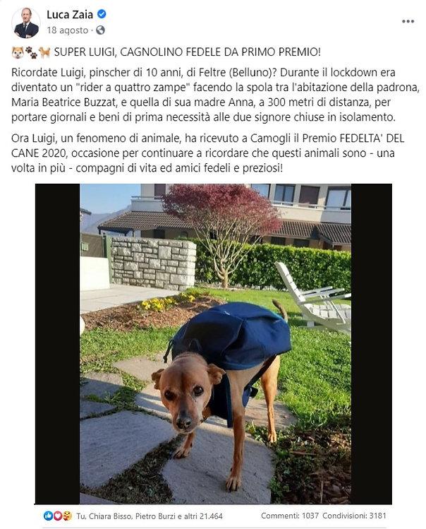 Post di ZAIA, Governatore del Veneto.jpg