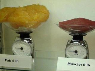 Ladies....Weight Training Won't Bulk You Up