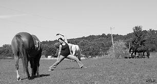 horsetouch11.jpeg