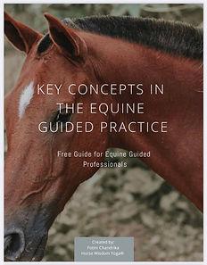 Free Guide Cover.jpg