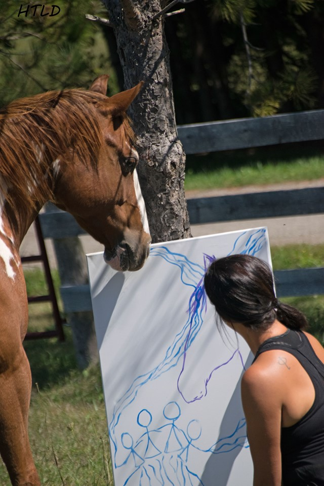 Equine Guided Experiences