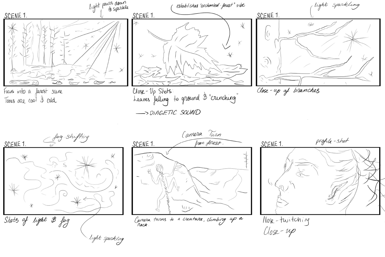 Certain Nature: Storyboard