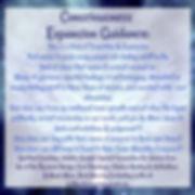 884cfefa-2014-485c-83fb-6fbf08dbeda9_sna