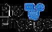 Pro Engage logo.png