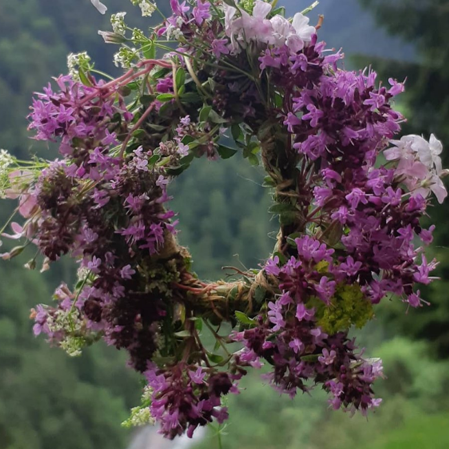 JAHRESBEGLEITUNG 2021 -    12 Pflanzenwesen & Meditationen im Jahreskreis