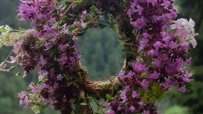 ONLINE JAHRESBEGLEITUNG - 12 Pflanzenwesen im Jahreskreis