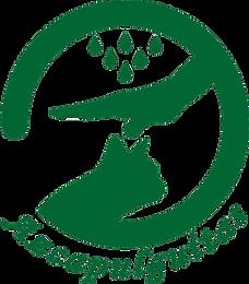 logo-Azcapulguitas-Verde.png