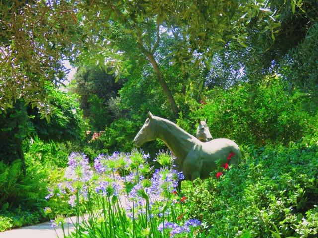 משק בשדה ורבורג - כולל אורוות סוסים