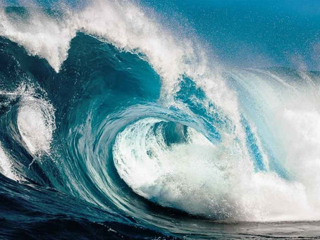 Get ready for Dynamics 365 Wave 2