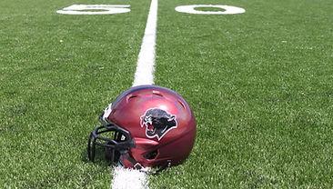 panthers helmet.jpg