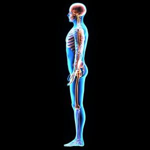 טיפול בנוירופתיה - מפגשי ריפוי בתנועה