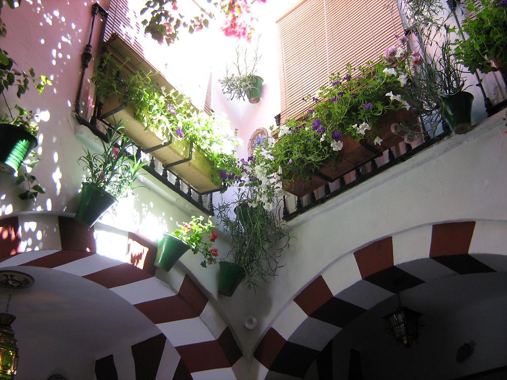 patio in Andalucía - foto: Ramón Ojeda - Flickr Creative Commons