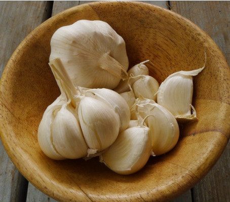 TEN(10) INTERESTING FACTS ABOUT GARLIC