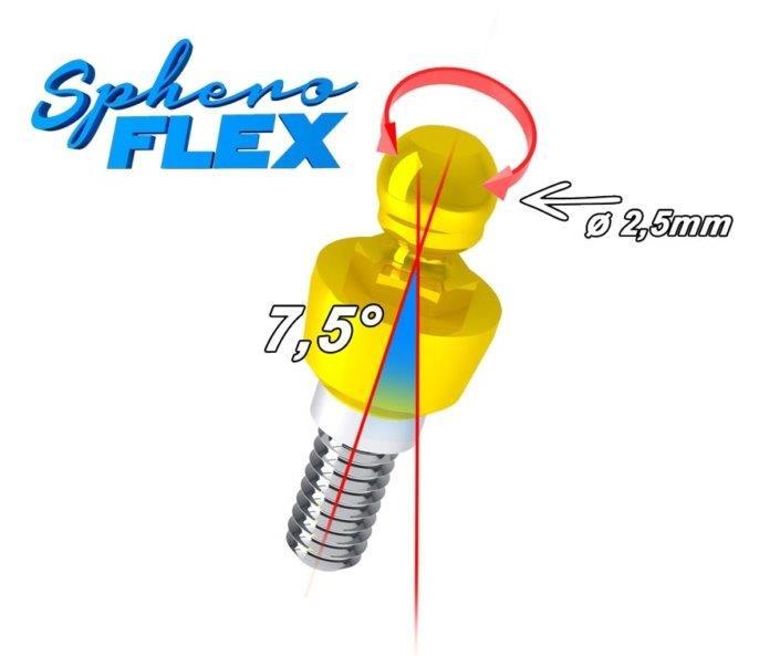 Sphero Flex 1.jpg