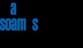 RSE_logo.png
