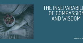 May 2nd Online Retreat: The Inseparability of Compassion and Wisdom
