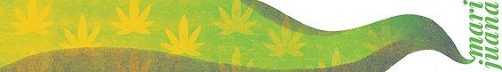 Cory_Bugden_General_Marijuana.jpg
