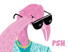 I.O.U. Flamingo