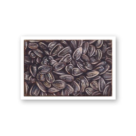 Semillas de girasol - Adrián Araiza