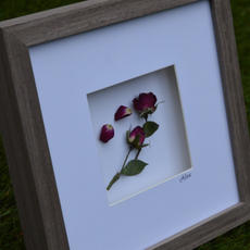 Framed Bouquets