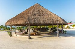 Philip Goldson Highway Belize-large-042-42-DSC 9950-1500x1000-72dpi