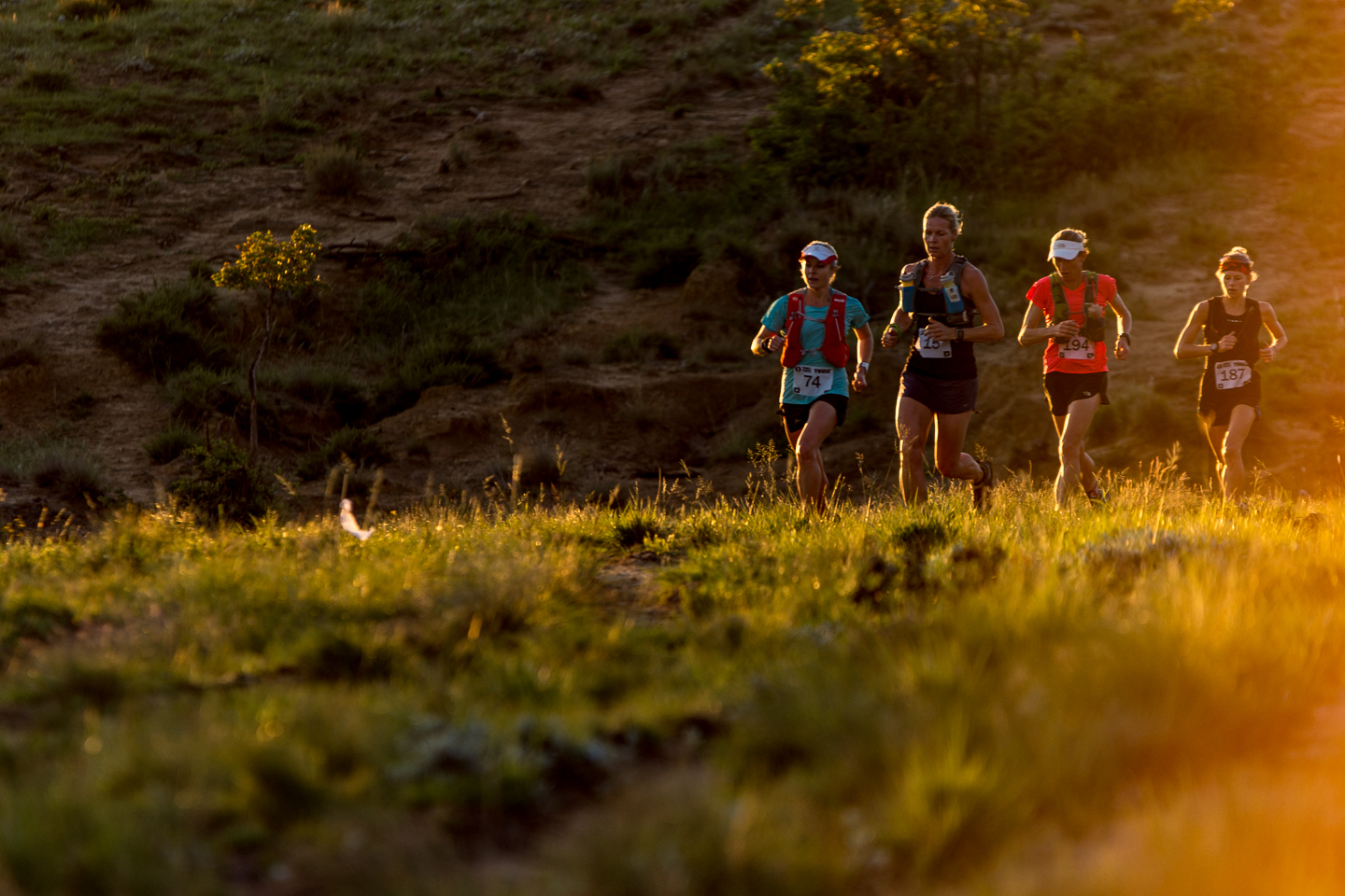 Ladies elite are bunched together in the early stages of the race.  ©TerenceVrugtman