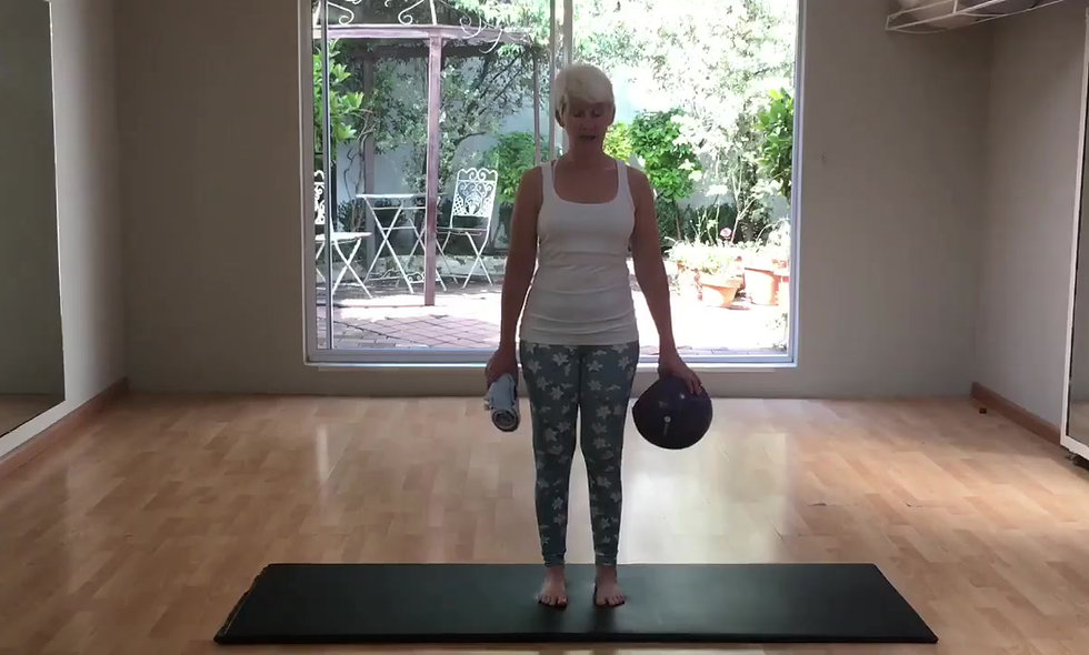Small ball workout for the mature client