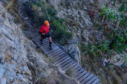 Arnold Chatz Nogwaja Trail 2017