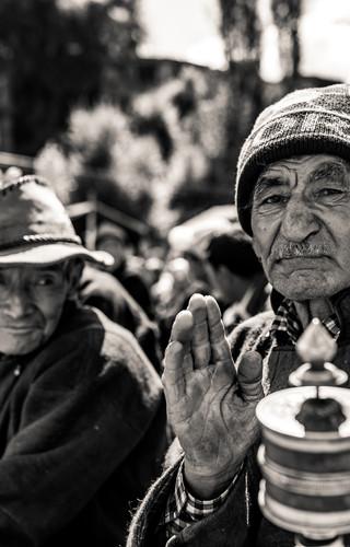 Aryan Elders