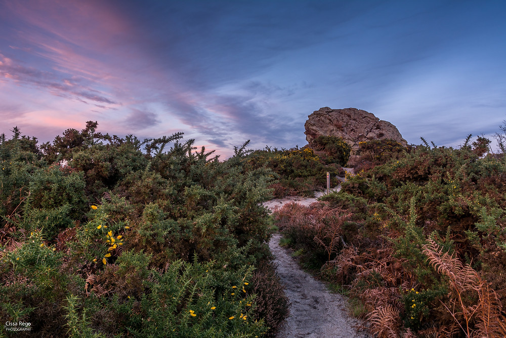 Agglestone Rock in Studland