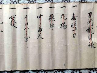 Oishi Shinkage-ryū Kenjutsu