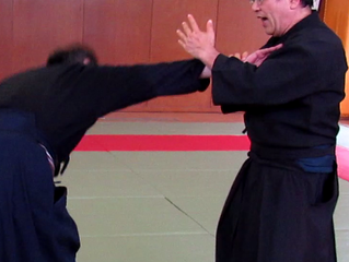 Striking in Koryu Jujutsu and Shibukawa Ichi Ryu
