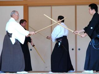 Kenjutsu As Supplementary Training