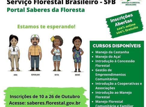Serviço Florestal Brasileiro lança cursos GRÁTIS e ONLINE