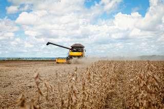 Bolsonaro amplia de 25 para 28 servidores dedicados a 'vender' o agronegócio do País no exterior