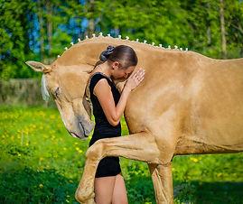 hugginghorse.jpg