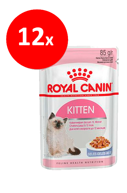 Royal Canin - PACK 12 unidades Kitten Sachet 85Gr.