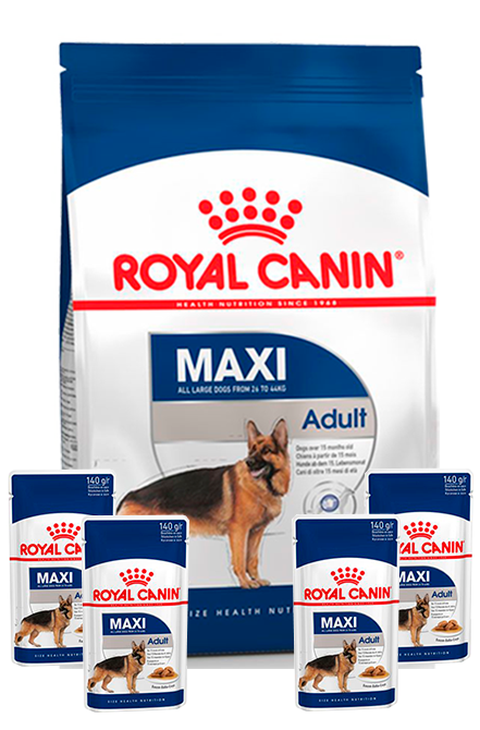 Royal Canin - PACK Maxi Adulto 15Kg + 4 sachet 140gr.