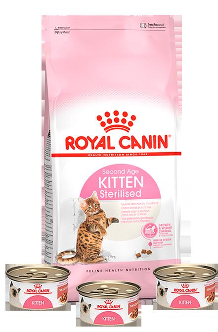 Royal Canin - PACK Kitten Sterilised 4Kg + 3 Latas 165g.