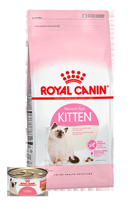Royal Canin - PACK Kitten 1,5Kg + 1 Lata 165g.