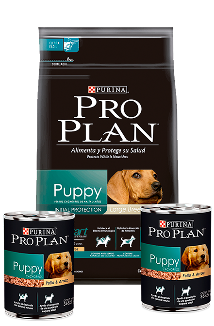 Pro Plan - PACK Puppy Large 15Kg + 2 Latas 368,5g.