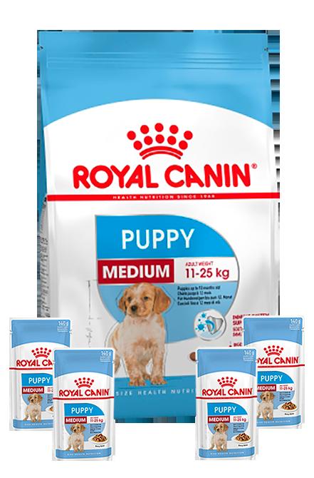 Royal Canin - PACK Medium Puppy 15Kg + 4 sachet 140gr.