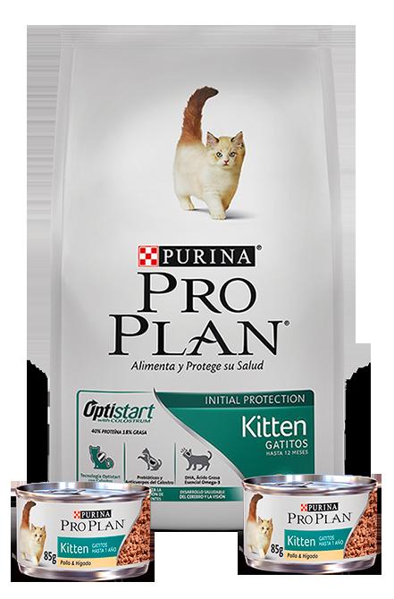 Pro plan - PACK Kitten Gatitos 3Kg + 2 Latas 85g.