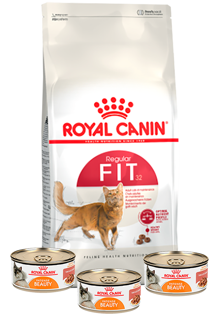 Royal Canin - PACK Fit 7,5Kg + 3 Latas 165g.