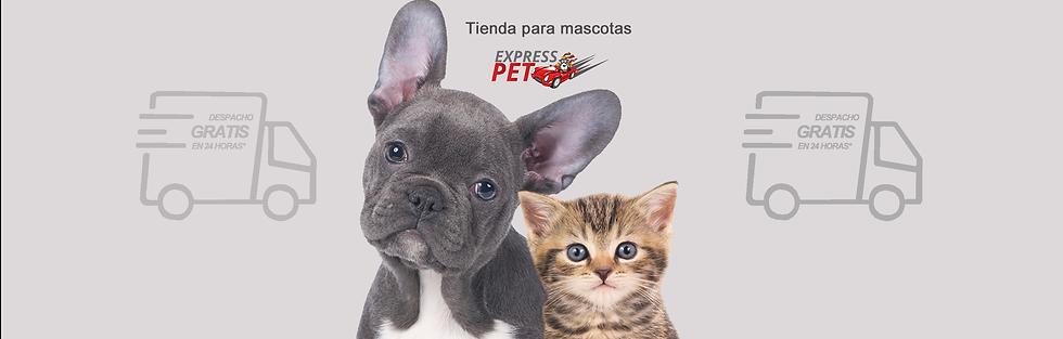OCTUBRE- Tienda de mascotas copia.png